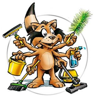 Профессиональный клининг: уборка офисов, коттеджей, жилых и производственных помещений