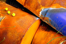 Как вывести пятна от ржавчины, чем удалить пятно от ржавчины, чем вывести пятно от ржавчины с одежды